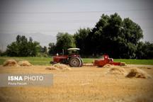 ۲۰ درصد محصولات زراعی استان قزوین بیمه هستند