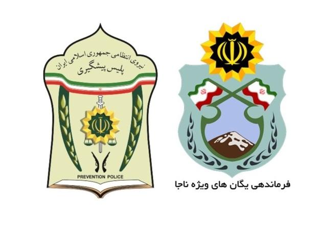 هزار پلیس افتخاری در تامین امنیت پایان صفر در مشهد مشارکت کردند