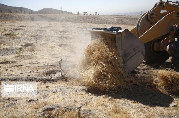 ۱۶۰ هزار متر از اراضی کشاورزی استان تهران به چرخه تولید بازگشت