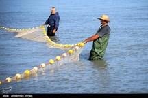 تمدید زمان صید ماهیان استخوانی در دریای خزر تمدید شد