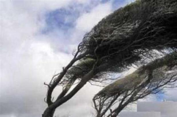 سرعت وزش باد در آوج به 86 کیلومتر برساعت رسید