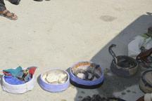 کشف هفت حلقه مار سمی کمیاب از شکارچیان در سرباز