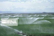سه هزار هکتار زمین کشاورزی در قزوین به آبیاری نوین تجهیز شد