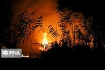 ۱۷۵ هکتار از مراتع همدان در آتش سوخت