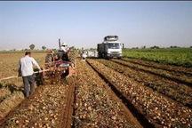 مهلت پرداخت تسهیلات کشاورزی در چالدران سه سال دیگر تمدید شد