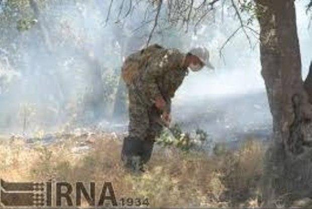 ارتفاعات جنگلی کردکوی در گلستان آتش گرفت