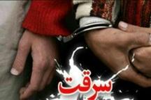 کشف 85 فقره سرقت و دستگیری 29 سارق