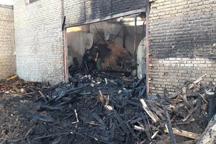 کارگاه چوب بری در آباده آتش گرفت