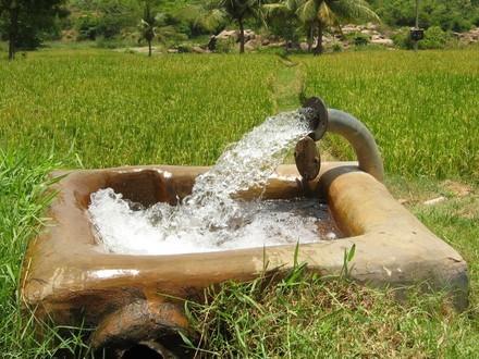 50 میلیون متر مکعب آب خام در چرخه تولید و مصرف کشاورزی زنجان