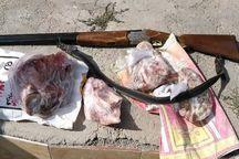 کشف لاشه حیوانات وحشی از منزل شکارچی گرگانی