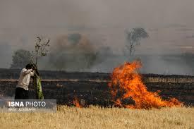 آتشسوزی اراضی و باغات گرمی 5 میلیارد تومان خسارت به همراه داشت