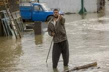 91 خانواده کرمانشاهی در سیلاب گرفتار شدند