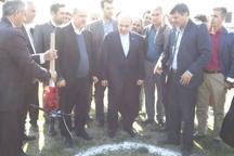 عملیات اجرایی زنجیره بزرگ تولید تخم مرغ گلستان در گنبد آغاز شد
