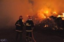 انبار علوفه و ۱۰ راس گوسفند در روستای بلروند خرمآباد در آتش سوخت