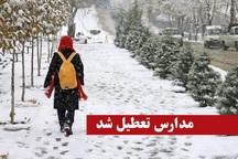 برف مدارس مناطق کوهستانی مازندران را برای روز شنبه تعطیل کرد