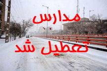 تعطیلی مدارس شهرستان خوی به دلیل یخبندان و برودت هوا