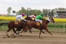هفته چهارم مسابقات اسب دوانی کورس بهاره گنبد برگزار شد