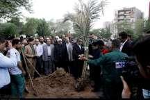 مردم اهواز به یاد شهدای حادثه تروریستی نهال کاشتند