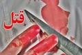 جوان 24 ساله در قلعه نو شهرری به  قتل رسید