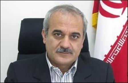 تاکید معاون استاندار کردستان بر ضرورت ثبت ملی گلزارهای شهدای استان