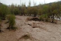 طوفان و بارندگی شدید در شرق گلستان خسارت هایی برجای گذاشت