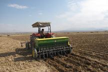 2580 هکتار از زمین کشاورزی دلیجان زیر کشت پاییزه رفت