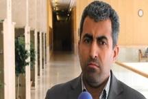 رئیس کمیسیون اقتصادی مجلس: واردات مذموم واردات کالاهای مشابه تولید داخل، مصرفی و کالایی است