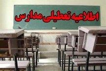 بارش باران موجب تعطیلی برخی مدارس در کرمان شد