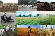توزیع 142 میلیون لیتر مواد سوختی در شبکه روستایی همدان