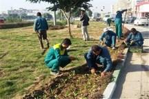 25میلیارد ریال مطالبات وبیمه معوقه کارگران فضای سبز آبادان پرداخت شد