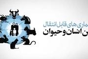مهمترین بیماریهای مشترک بین انسان و حیوان در خوزستان کدامند؟