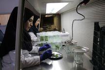 بهینهسازی تولید برخی گیاهان دارویی و زینتی در آذربایجانغربی