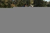 سوارکار نونهال ارومیه ای در فستیوال پرش با اسب ایران حضور دارد