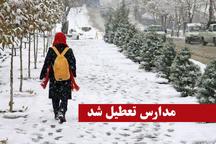 برف مدارس زنجان را تعطیل کرد