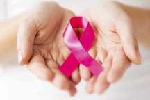 ساخت سامانه دارویی برای درمان سلولهای سرطانی در کشور