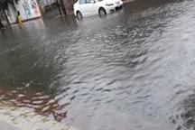 البرزی ها  خطرات  بارش های سیلابی را جدی بگیرند