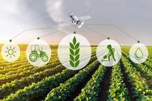 انتخاب یزد به عنوان پایلوت طرح استفاده از استارتاپهای اقتصاد کشاورزی