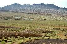پاسگاه حیات وحش در منطقه یخاب آران و بیدگل احداث می شود
