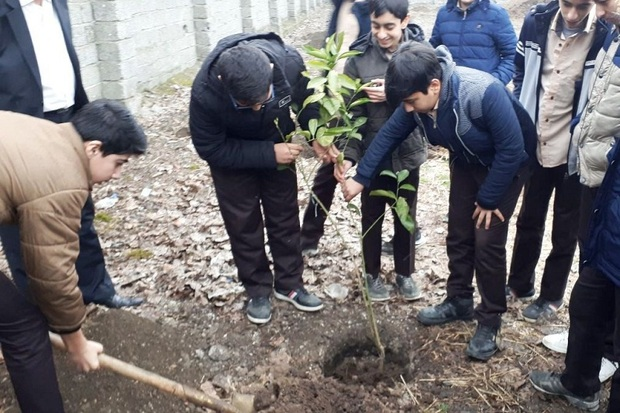 دوستداران طبیعت در آستارا درخت کاشتند