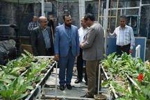 اجرای بیش از ۱۰۰۰ طرح پژوهشی توسط جهاد دانشگاهی آذربایجان غربی