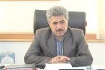 اختصاص 6 میلیارد ریال اعتبار برای گردشگری تنگستان بوشهر