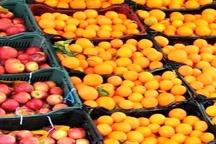 توزیع 1100 تن سیب وپرتقال برای تنظیم بازار میوه شب عید   260 تن ؛ سهمیه روزانه گوشت مرغ استان