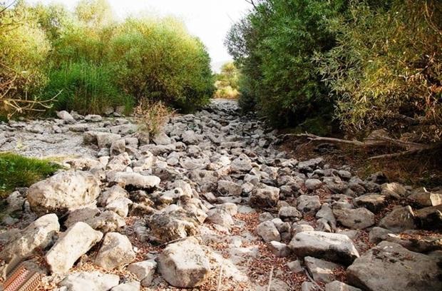 اغلب رودخانه های شاخص استان فارس خشک شده است