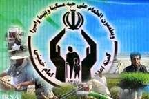 مدیرکل کمیته امداد:11هزار مددجوی مستعد اشتغال در استان زنجان شناسایی شدند