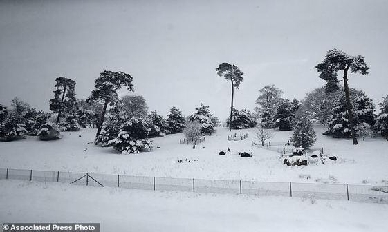 عکس/ بارش برف سیاه در روسیه