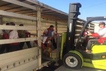 ارسال 8 کامیون حامل کمک های مردم آستانه اشرفیه به مناطق زلزله زده