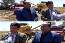 پیشبینی برداشت 60 هزار تن گندم از مزارع حمیدیه