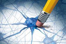 مغز خاطرات ترسناک را ویرایش میکند