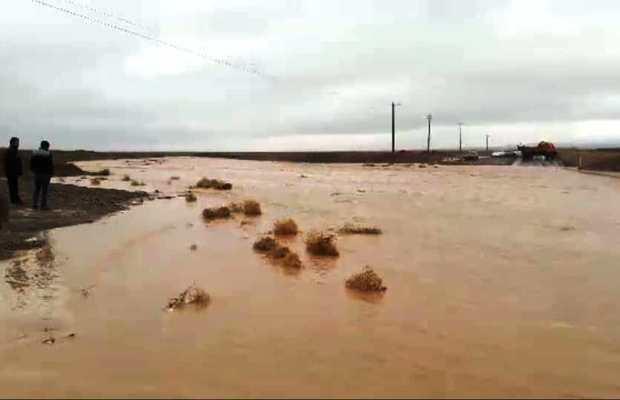 سیلاب جاده تایباد – باخرز فروکش کرد