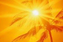 افزایش دما پدیده غالب کشور